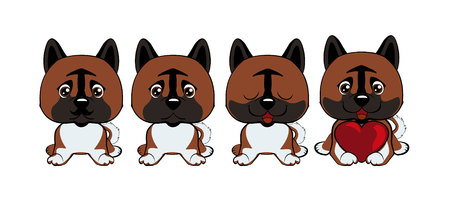 Dog American Akita. set of different little dogs. Brown puppies with different emotions.