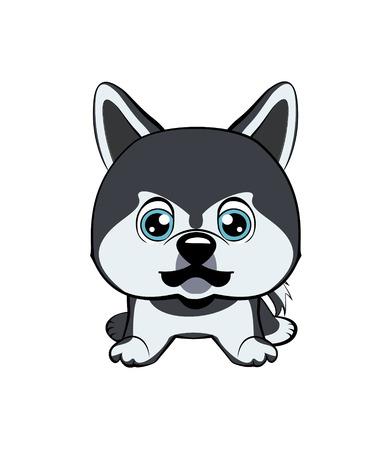 Vector illustration of Angry Dog. dog Alaskan Kli Kai breed sitting.