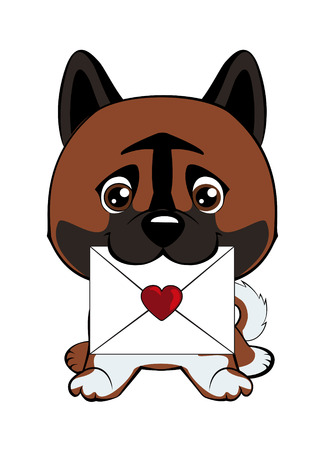 Cute fuzzy dog delivering mail envelope. Dog American Akita