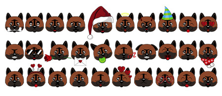 A large set of heads of little dogs with different emotions and different objects. Dog American Akita Vector Illustration