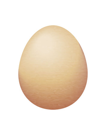 brown chicken egg on a white background
