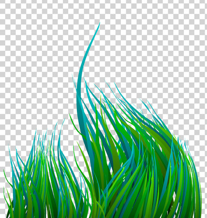 green grass swaying on a transparent background Иллюстрация