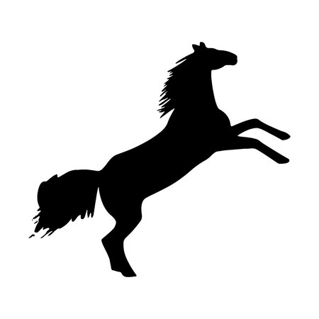 The silhouette of a horse that stood on its rear hooves. rearing up black mustang - standing horse side view vector silhouette