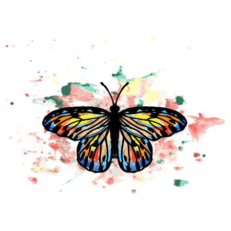 mariposa grande y hermosa con manchas de acuarela multicolores