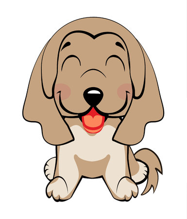 Afghan hound breed.Isolated colorful head and face of happy labrador retriever on white background. Color flat cartoon breed dog portrait