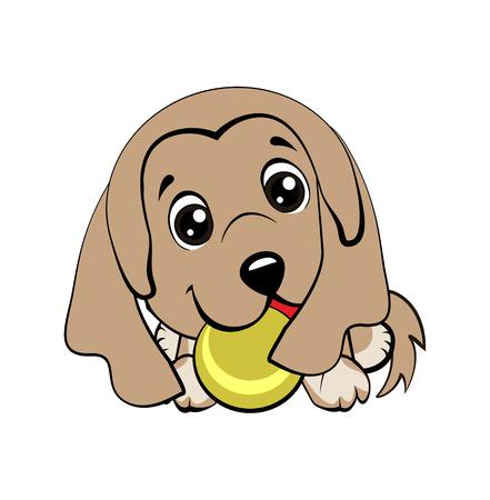 Raza de sabueso afgano. Dibujo de estilo de dibujos animados de vector de un cachorro juguetón jugando con una pelota de tenis.