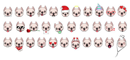A large set of heads of little dogs with different emotions and different objects. Dogo Argentino dog
