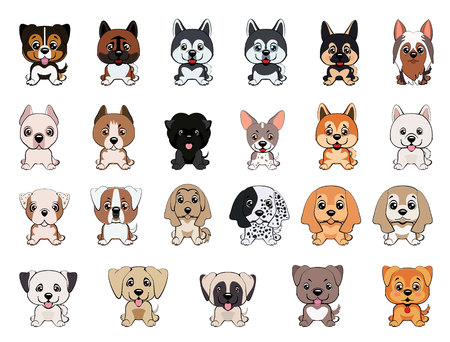 a set of dogs of different breeds, puppies of different colors, types of ears, muzzles