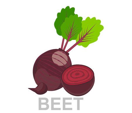 アイコンビート全体とセクションで。ベクターシュガービートイラスト単離 - 健康な野菜、栄養アイコン - 野菜食品、ベクタービートルート