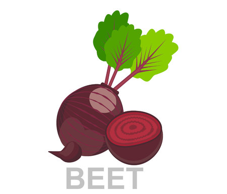 icon Beet whole and in section. vector sugar Beet illustration isolated - healthy vegetable, nutrition icon - veggie food, vector beetroot Ilustracja
