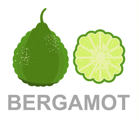 Bergamot icon entirely and in a cut Vectores