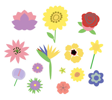 Floral vector set. abstract flowers and leaves. Collection of hand drawn sketch style flowers