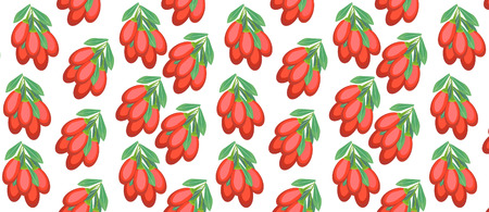 pattern with Goji Berry Illustration