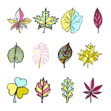 Set of Doodle Leaves Sketch line illustration