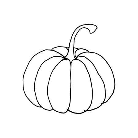 hand draw pumpkin. Autumn holidays Ilustração