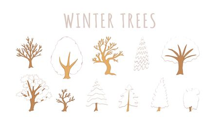 Set of winter trees on white background.
