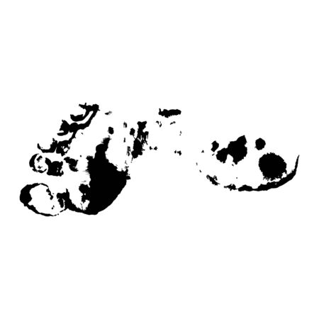 Foot prints. Black on white
