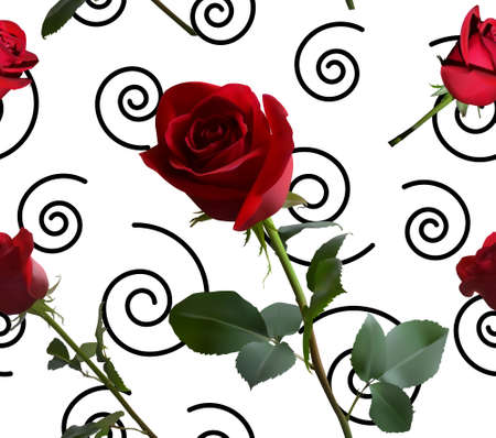 A pattern with red roses with green leaves and a long stem on the background of a black spirals 矢量图像