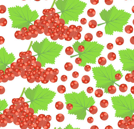 pattern with RED CURRANT berries Ilustração