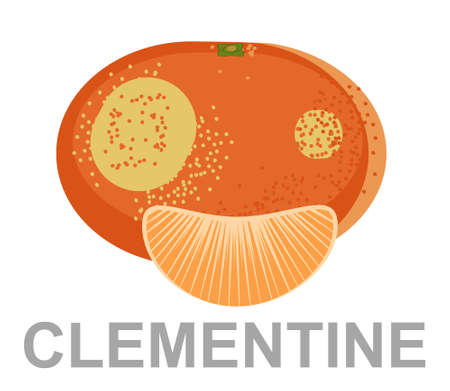 Clementine icon entirely and in a cut 矢量图像