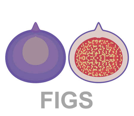 Figs icon entirely and in a cut 免版税图像 - 164672827