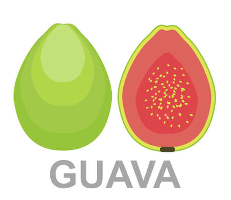 Guava icon entirely and in a cut. Summer tropical fruits for healthy lifestyle. Guava, whole fruit and half. Vector illustration cartoon flat icon isolated on white.