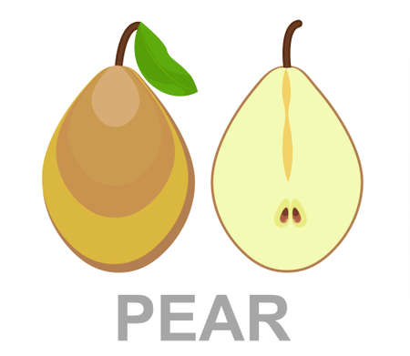 Pear icon entirely and in a cut. vector pear illustration isolated - healthy fresh fruit symbol