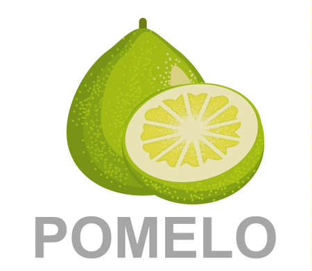 Pomelo icon entirely and in a cut 矢量图像