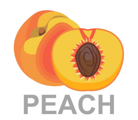 Peach icon entirely and in a cut 矢量图像