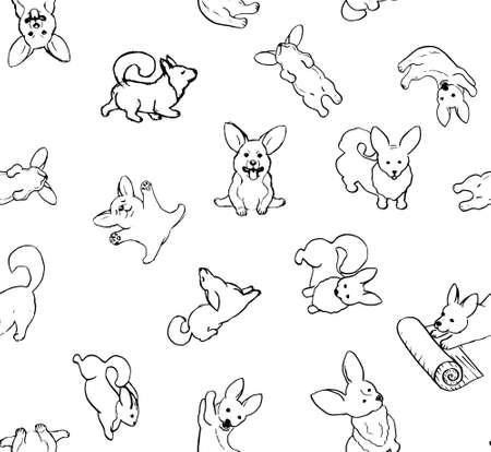 funny and cute corgi puppies 矢量图像