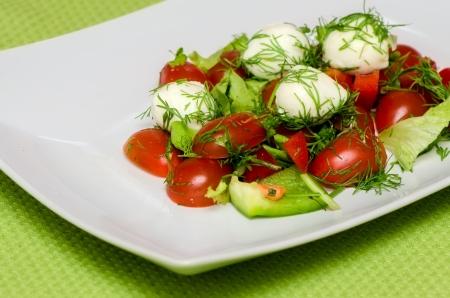 하얀 접시에 모짜렐라 치즈와 야채 샐러드 스톡 사진
