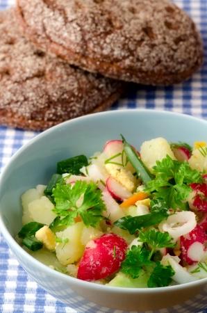 Summer salad of fresh vegetables 스톡 사진