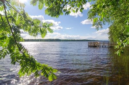 Lake shore  Summer landscape  Finland