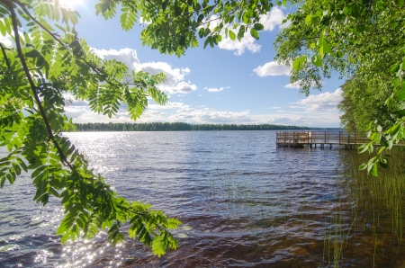 Lake shore  Summer landscape  Finland