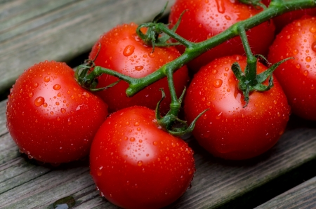 Fresh red tomatoes on a background of old boards