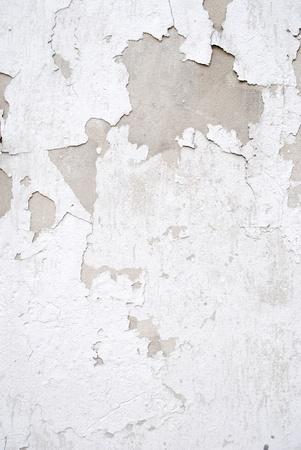 fissure: Mur fissur�