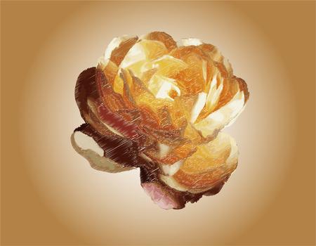 spring balance: Rose