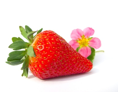 a strawberry and a strawberry flower isolated on white background