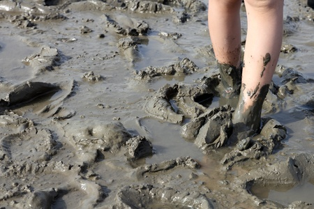 muddy feet in the tideland at the seashore