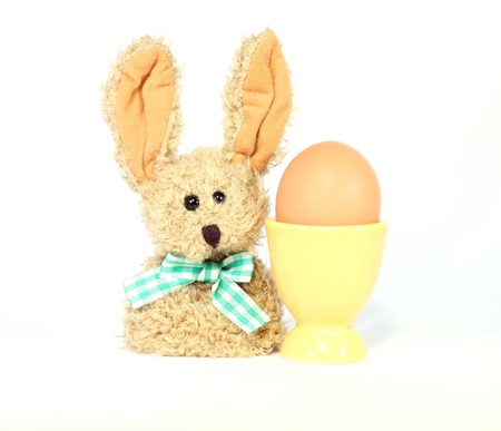 egg in eggcup and easter bunny isolated on white background photo