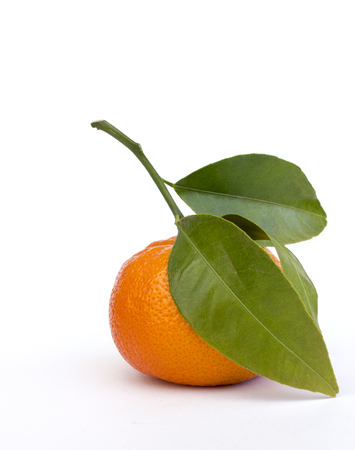 tangerine or mandarin fruit whole  with green leaves isolated on white background Stock Photo