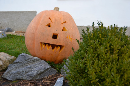 hallowen: pumpkin Stock Photo