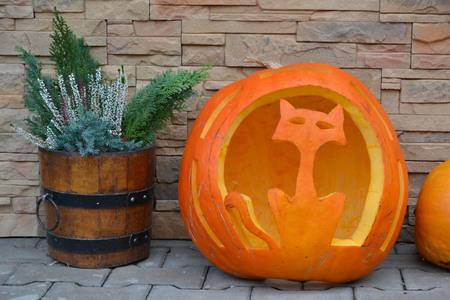 espantapajaros: pumpkin Foto de archivo