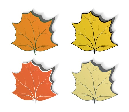 Autumn design elements, badge advertise sticker Vector