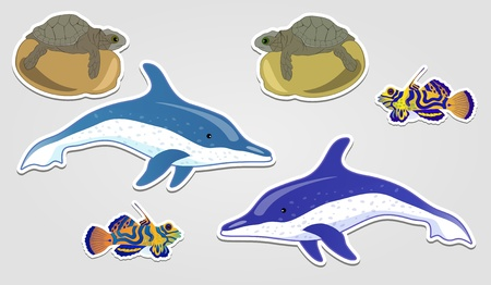 Design elements, badge advertise sticker in the form of a dolphin cartoon turtles and exotic fish eps10 Vector