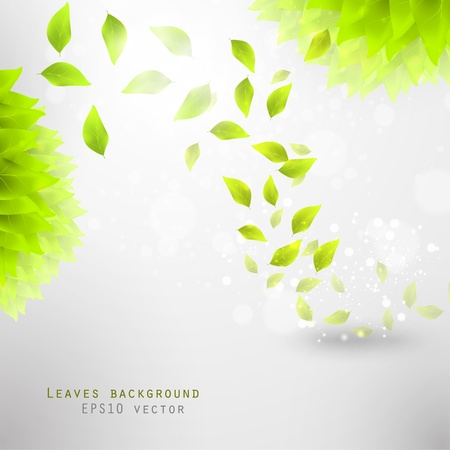 green leaves, eco background eps10