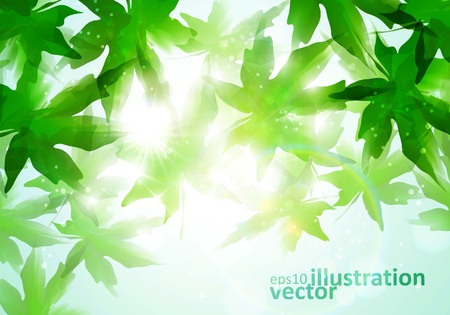 colorful watercolor leaves  Environment leaf background, season poster  Stock Vector - 12498597