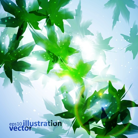 colorful watercolor leaves  Environment leaf background, season poster Vector