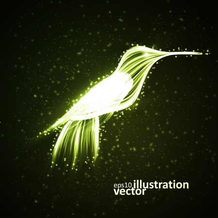 Neon hummingbird, abstract lights background Vector
