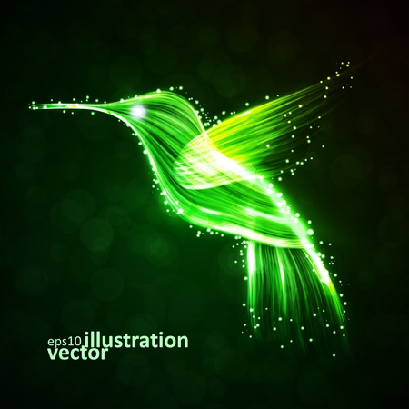 Neon hummingbird, abstract lights vector backgrounds